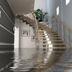 Water Damage Repair in IL