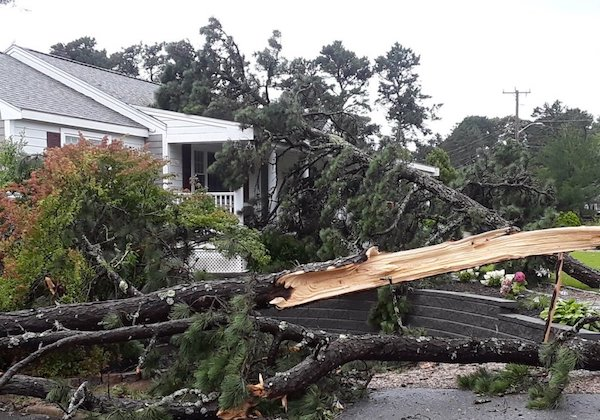 Storm damage local service IL