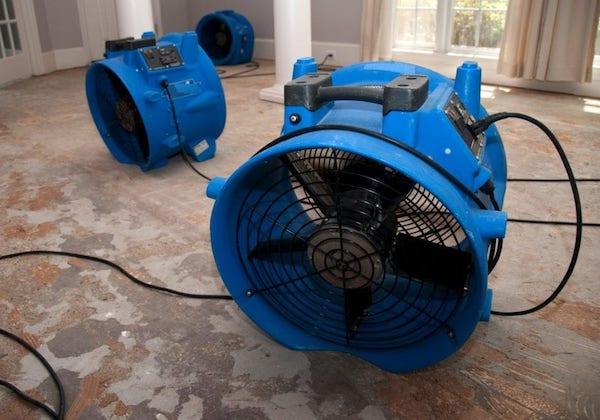 water mitigation service