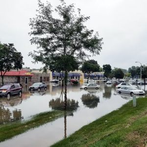 Comprehensive Guide: What to Do After Flooding?